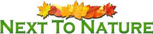 Next To Nature Logo